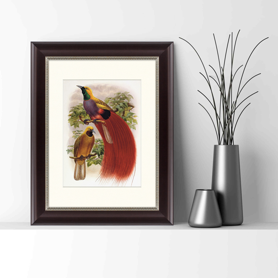 {} Картины в Квартиру Картина Гольдиева Райская Птица (35х45 см) картины в квартиру картина геометрия света 2 35х45 см