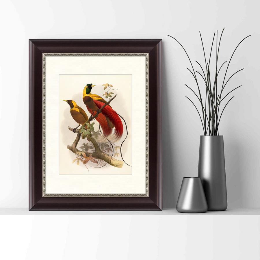 {} Картины в Квартиру Картина Красная Райская Птица (35х45 см) счетчики тепла в квартиру