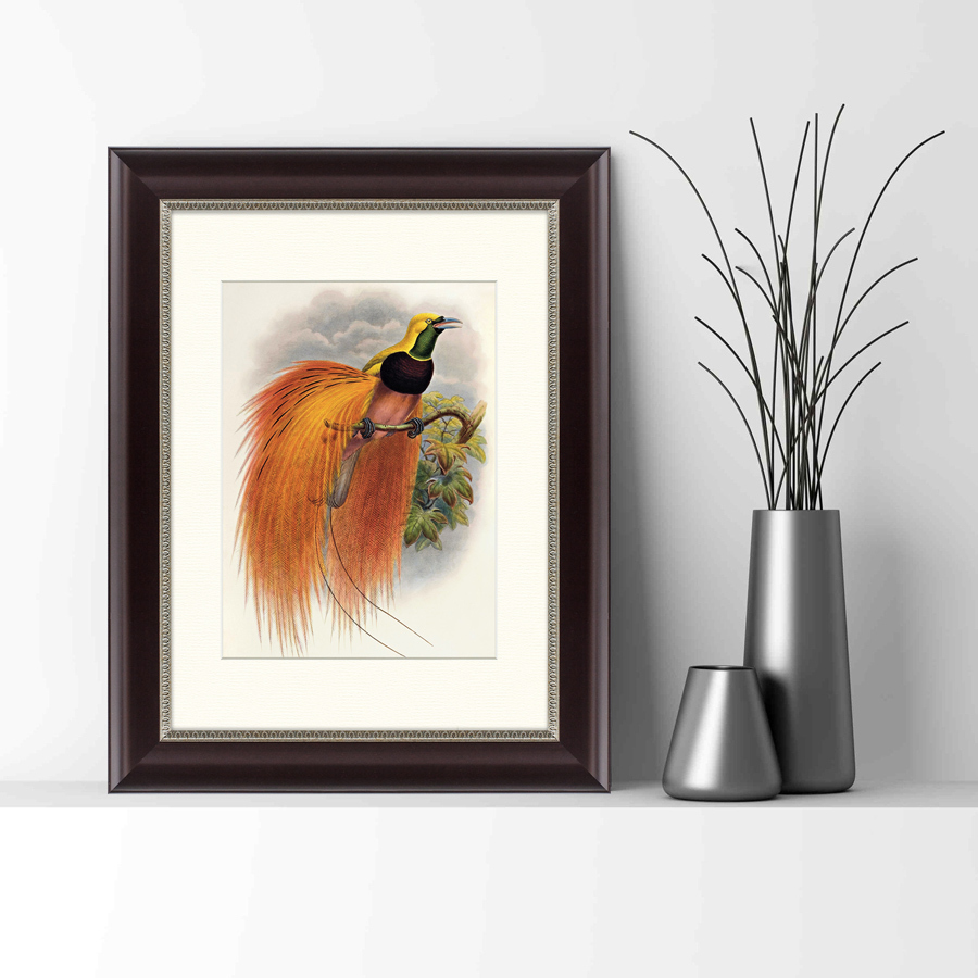 {} Картины в Квартиру Картина Красная Райская Птица (35х45 см) картины в квартиру картина геометрия света 2 35х45 см