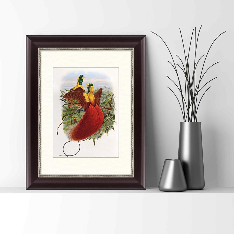{} Картины в Квартиру Картина Красные Райские Птицы (35х45 см) картины в квартиру картина геометрия света 2 35х45 см