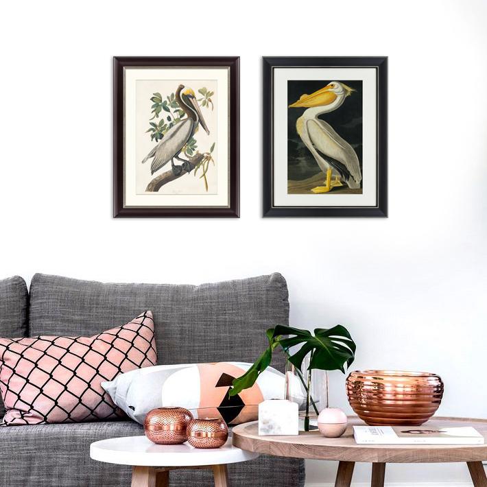 {} Картины в Квартиру Картина Американский Белый Пеликан (47х60 см) картины в квартиру картина sunrise 35х77 см