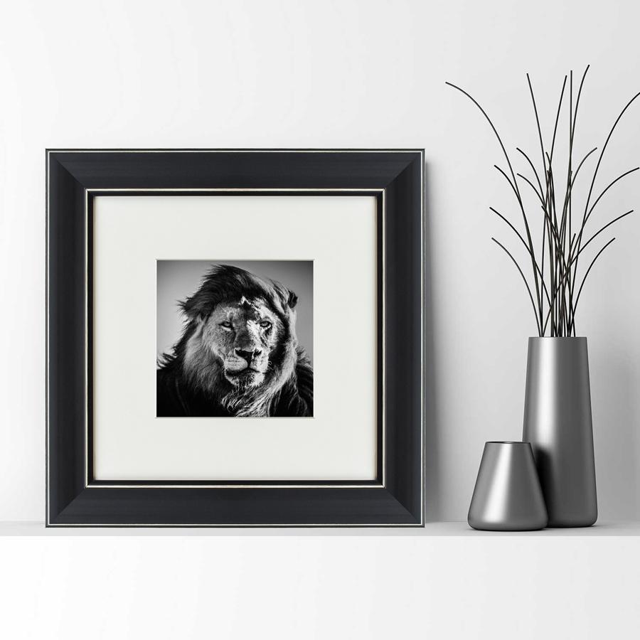 {} Картины в Квартиру Картина Портрет Льва (35х35 см) картины в квартиру картина опасные домохозяйки 2 35х35 см