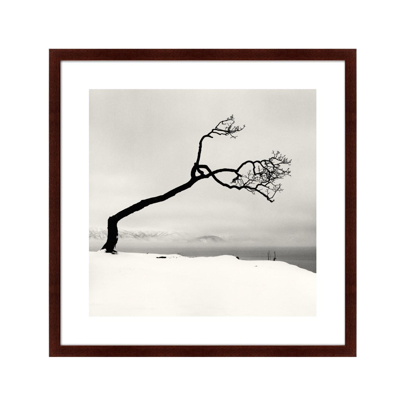 {} Картины в Квартиру Картина Snow No.3 (79х79 см) мне предлагают 1комнат квартиру