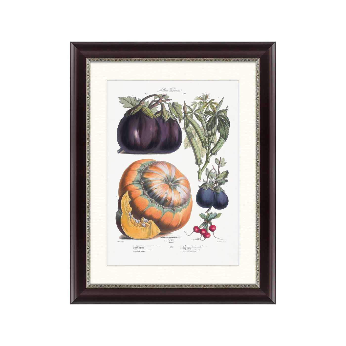 {} Картины в Квартиру Картина Vilmorin Andrieux & Cie, Альбом №23 (47х60 см) картины в квартиру картина спил 2 47х60 см