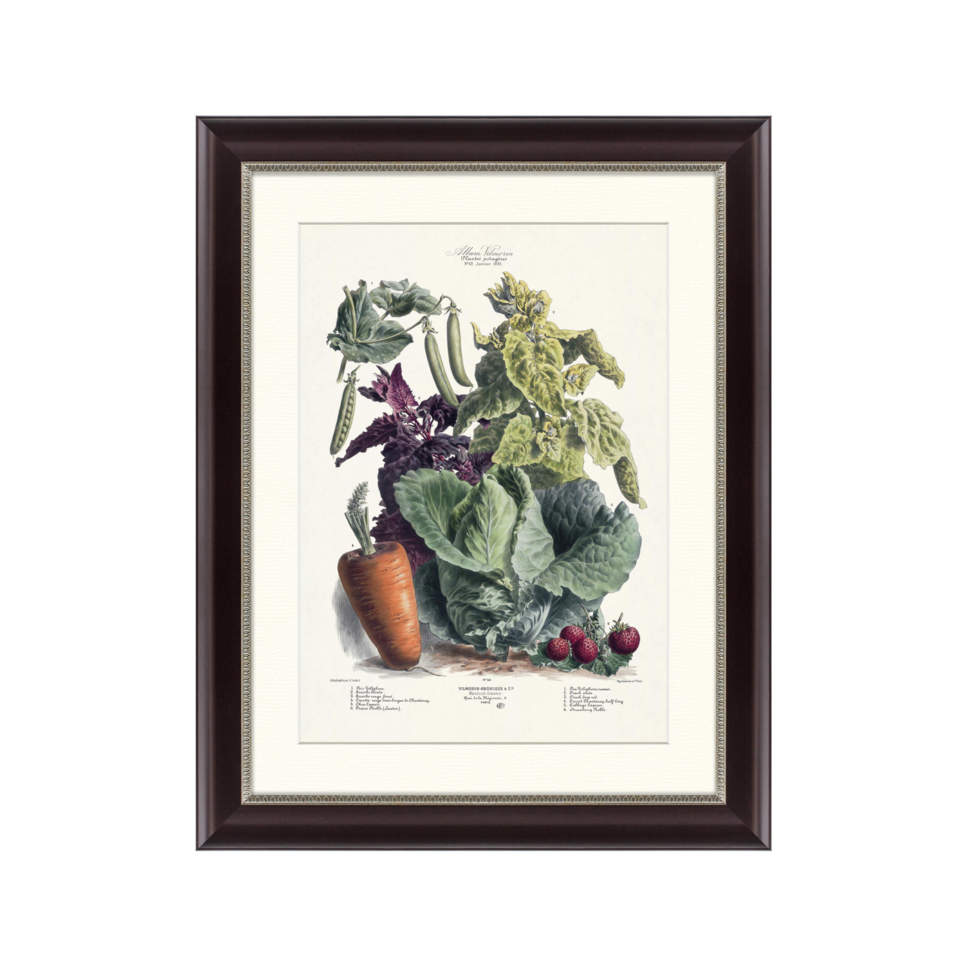 {} Картины в Квартиру Картина Vilmorin Andrieux & Cie, Альбом №42 (47х60 см) счетчики тепла в квартиру