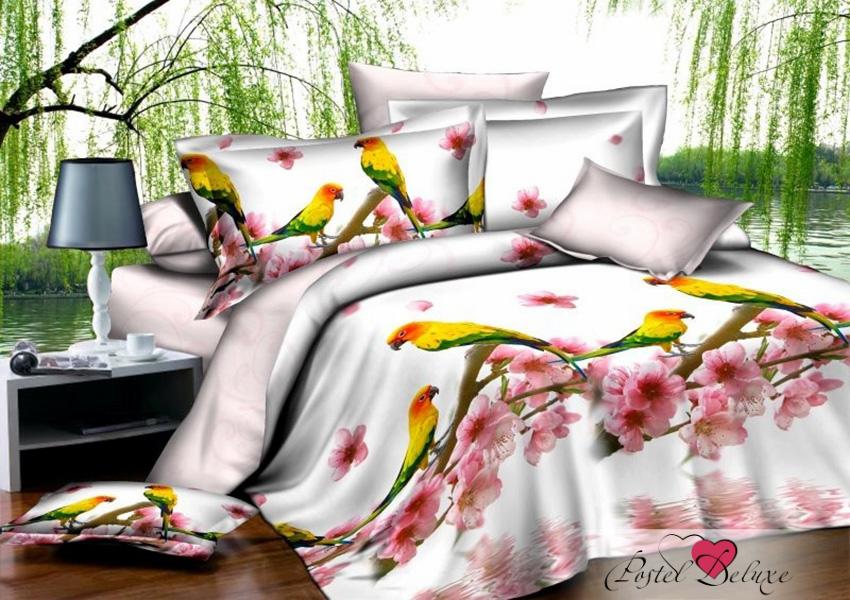 Cleo КПБ Bright Parrots (1,5 спал.)