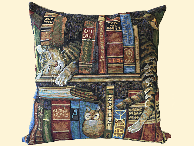 Декоративные подушки Мток Декоративная наволочка Библиотекарь (50х50) мток мток декоративная наволочка стрекоза 50х50