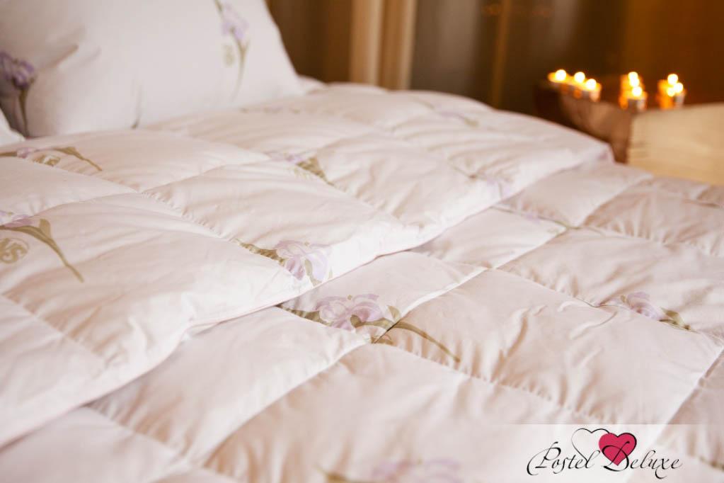 Одеяла Nature'S Одеяло Царственный Ирис Всесезонное (220х240 см)