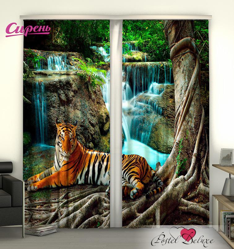 Шторы Сирень Фотошторы Индийский Тигр