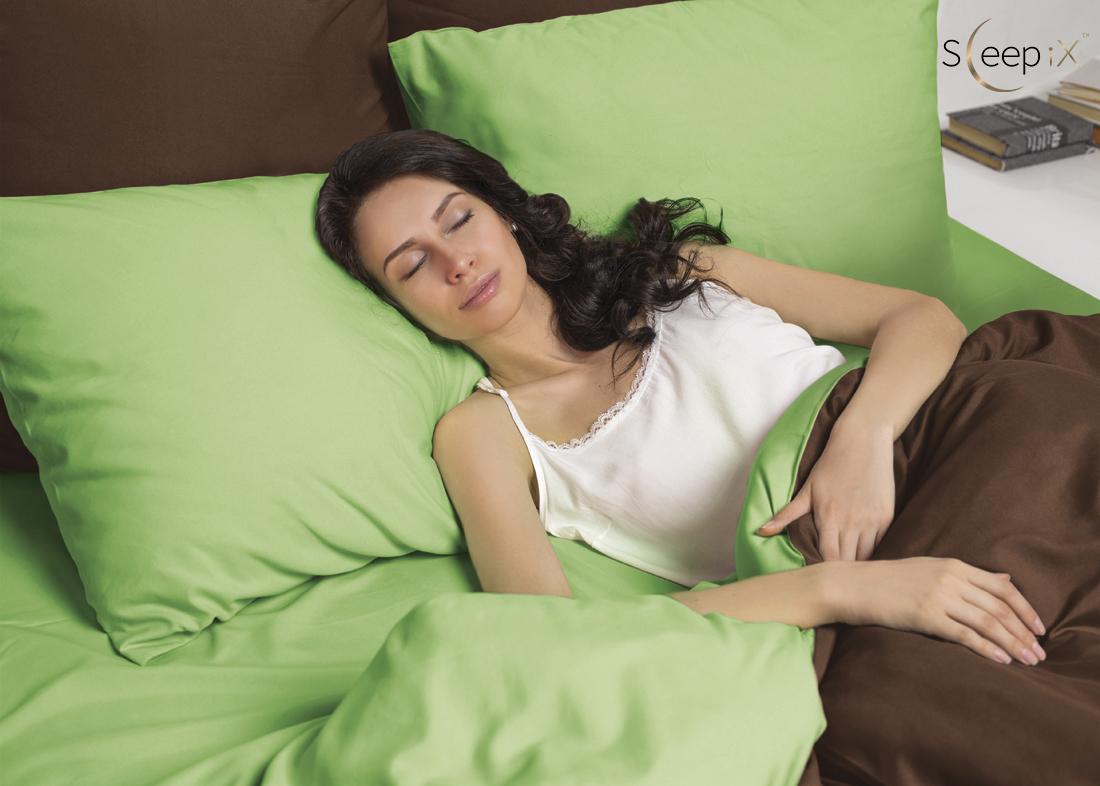 Постельное белье Perfection Цвет: Зеленый + Темно-Коричневый (семейное) Sleep iX