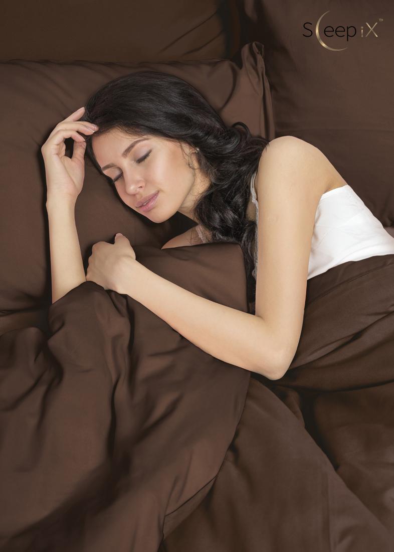 Постельное белье Perfection Цвет: Темно-Коричневый (2 сп. евро) Sleep iX
