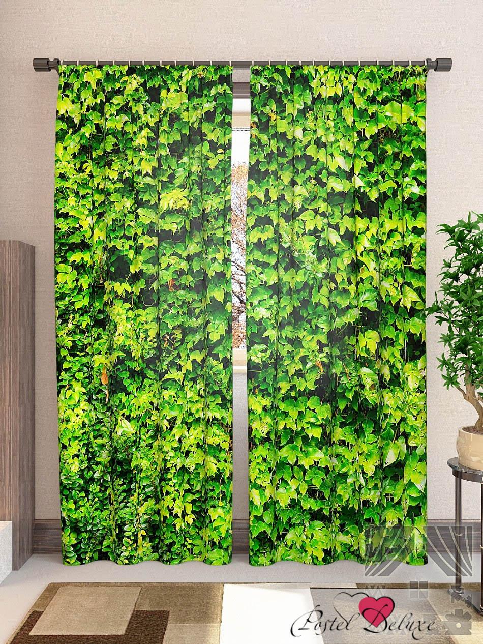 Шторы ТомДом Фотошторы Зеленая Стена